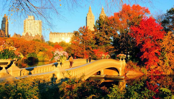 뉴욕의 날씨 - 가을