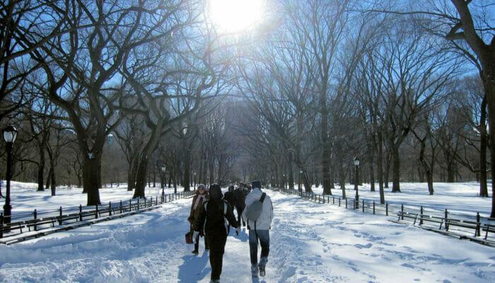 뉴욕의 날씨 - 겨울