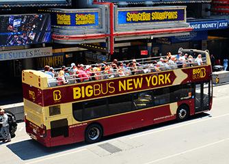 뉴욕 빅버스 - 버스