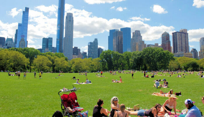 Central Park Sheep Meadow
