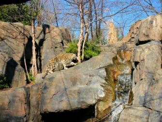 센트럴파크 - 센트럴파크 동물원