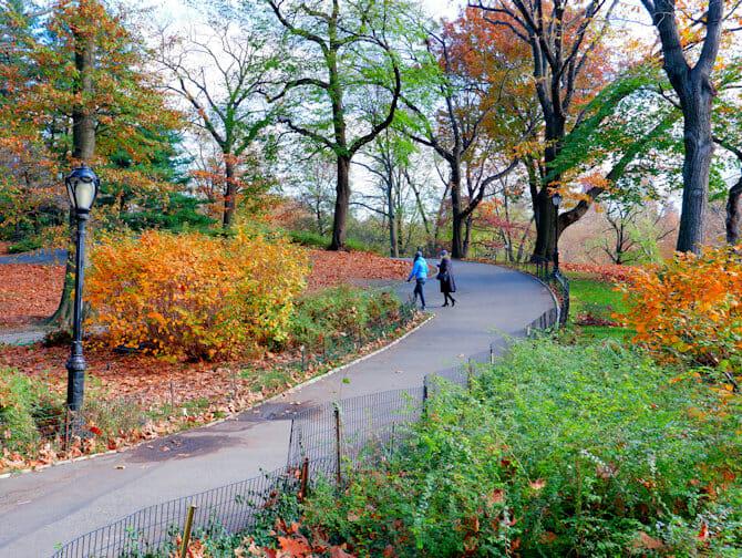 뉴욕의 공원