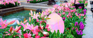 뉴욕 부활절