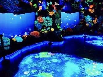 내셔널 지오그래피 인카운터 오션 오딧세이 - 깊은 바다