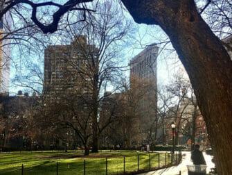 뉴욕 플랫아이언 빌딩 - 매디슨 스퀘어 공원
