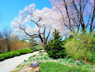 뉴욕의 식물원 - 브롱크스 뉴욕 식물원
